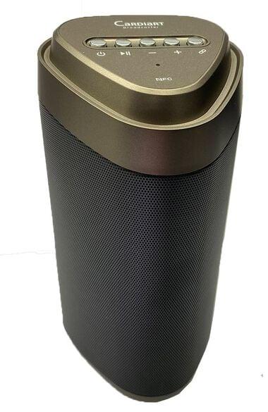 Digital Stethoscope Speaker, , large