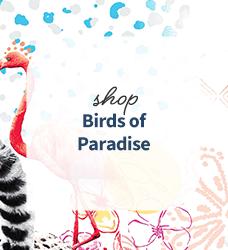 Shop our collection of tropical bird print scrubs