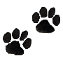 Small Paw Prints